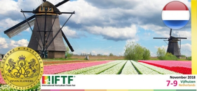De Nuevo INVOSFLOWERS participara en International Floriculture Trade Fair Holanda 2018!!!
